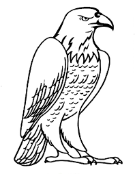 bald eagle coloring page virtren com