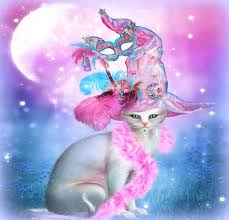 pink halloween background free cat in fancy witch hat hd desktop wallpaper widescreen high