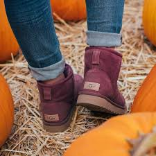 everyone went for ugg boots best 25 chestnut uggs ideas on ugg boots