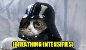 Cat Heavy Breathing Meme - heavy breathing cat meme imgflip