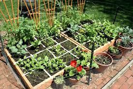 garden layout ideas australia raised vegetable boundless table