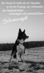 schöne hundesprüche schutzengel hund youdids sprüche hunde schutzengel