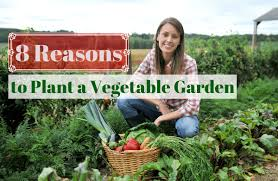 what to grow in a vegetable garden the benefits of growing your own food sparkpeople