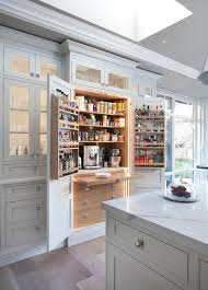 Kitchen Pantry Idea by House Design Cozy Contemporary Kitchen Pantry Contemporary