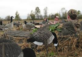goose hunting small steps to big success