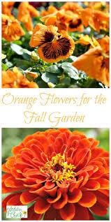 136 best plant lists images on pinterest gardening flower