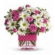 All About Flowers - all about flowers florists 332 old maple ave north haven ct