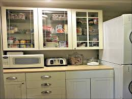 doors for ikea kitchen cabinets 100 kitchen cabinet doors ikea frosted glass cabinet doors