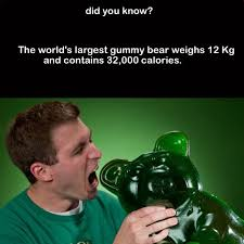116 best did you images on random facts