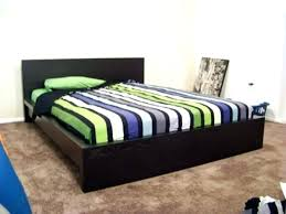 Malm Low Bed Frame Ikea Malm Bed Dynamicpeople Club
