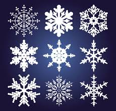 different snowflake pattern mix vector graphics 01 vector