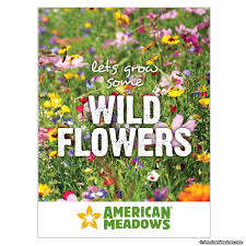 cheap seed packets 20 flower seed packets cheap let s grow wildflowers seed