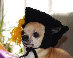 dog graduation cap dog graduation etsy