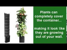 indoor living wall planter made easy youtube