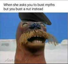 Walrus Meme - walrus nutting memes are good investments buy memeeconomy