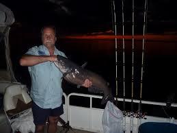 santee cooper fishing guides santee cooper cats