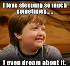 I Like Food And Sleep Meme - love sleeping so much funny pictures quotes memes funny images