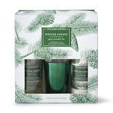 spiced chestnut soap williams sonoma spiced chestnut soap lotion deluxe 5