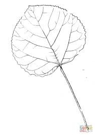 aspen leaf coloring page free printable coloring pages