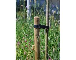 tree stakes agricultural fencing tree stakes jacksons fencing