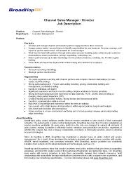 Sales Manager Resume Samples by Job Wining Channel Sales Catering Sales Manager Resume For