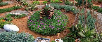 Meditation Garden Ideas Landscapes Succulent Landscaping Services Small Garden