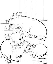 coloriages zuh zuh pets hamster