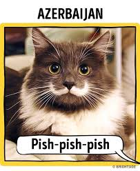 Hipster Cat Meme - how to call to a cat in different languages