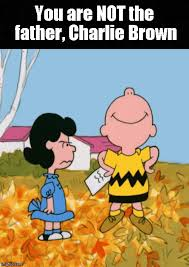 Charlie Brown Memes - the new charlie brown book is here imgflip