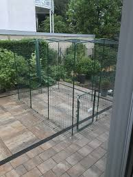 cat runs into glass door outdoor cat run large spacious outdoor cat enclosure