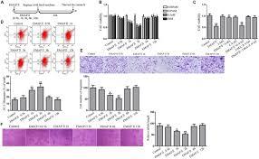 frontiers endothelial monocyte activating polypeptide ii
