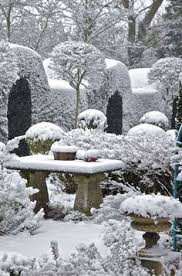 Winter Gardening Ideas 30 Best Winter Gardening Ideas To Go With Your Envirocycle
