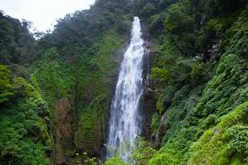 eastern and western ghats sharavathy valley an escapade into the wilderness of the western