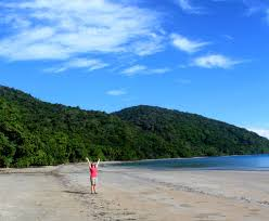 The Beach House Cape Tribulation by Unique Daintree Rainforest Experiences You Can U0027t Miss Off Track