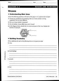 worksheets bacteria and viruses worksheet worksheets viruses