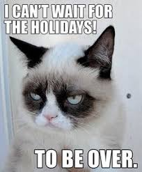 9 Best Grumpy Cat Memes - having 9 lives would be great if they weren t mundane and devoid of