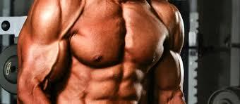 the best chest workout guide buildupperchest com