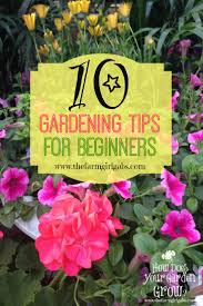 Gardening For Beginners Vegetables by 10 Gardening Tips For Beginners The Farm Girl Gabs