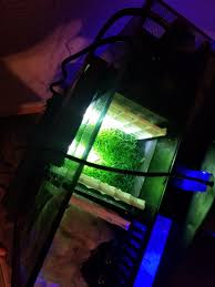 Refugium Light Fluval Evo 13 5 Refugium Mod And Diy Media Baskets Album On Imgur
