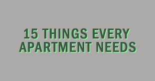 apartment needs 15 things every apartment needs aspen heights