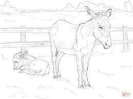 donkey with baby coloring page free printable coloring pages