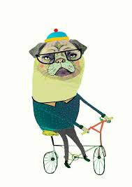 Pug Home Decor Pug On Bike Limited Edition Art Print By Illustrator Ashley