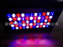 best lighting for corals best 165w aquarium light led aquarium lighting coral grow plants