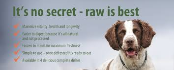 dogs raw food diet uk facts about iams dog food cure for