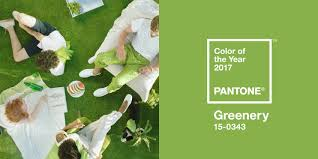 pantone unveils greenery as 2017 color of the year builder