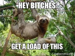 Make A Sloth Meme - hey bitches get a load of this sloth make a meme