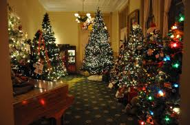 christmas tree house christmas tree walk woodstock illinois