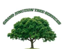 tree removal in grand junction grand junction tree removal