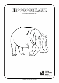 baby hippo coloring pages animals coloring pages cool coloring pages
