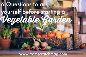 6 questions to ask yourself before starting a vegetable garden
